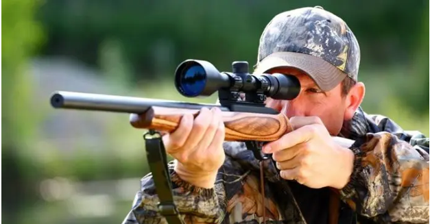 How to choose the best air rifle?